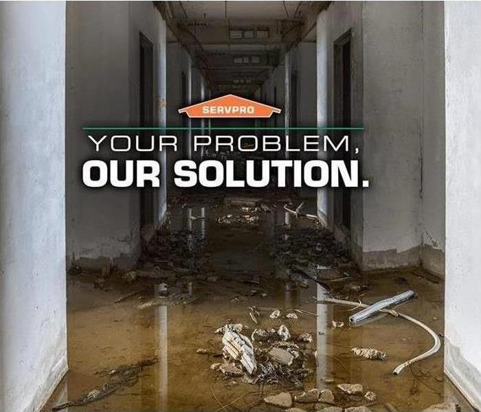 Water Damage Did You Know Water Damage Has a Timeline!