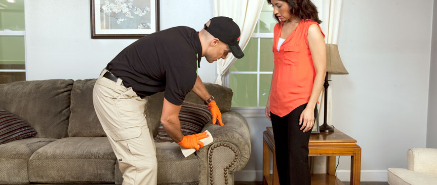 Walnut, CA carpet upholstery cleaning